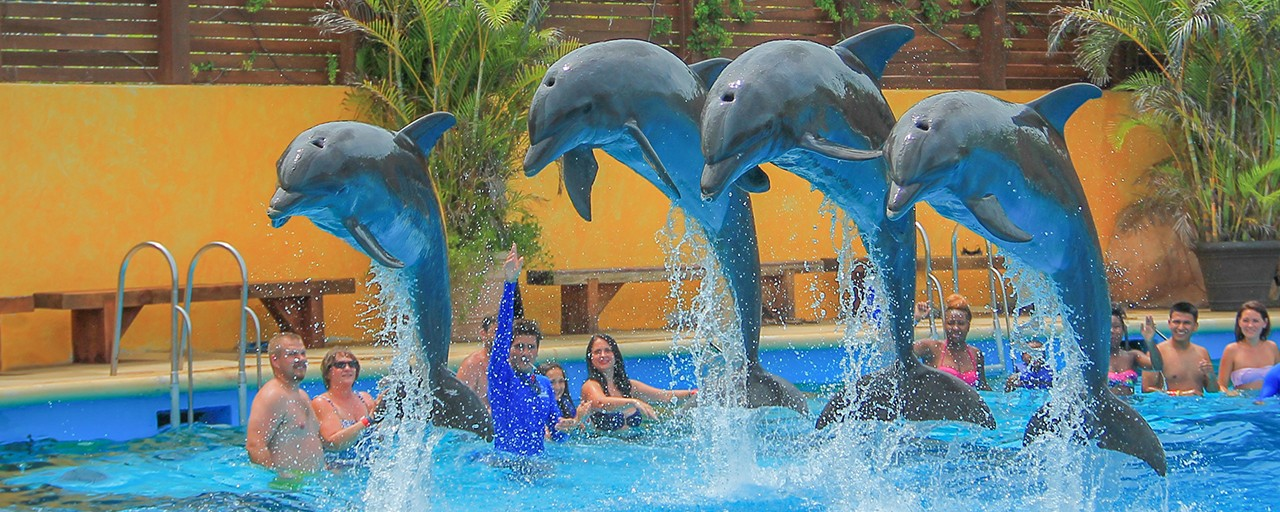 Family activities in Puerto Vallarta