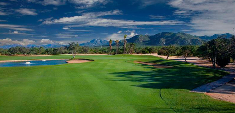 Map of Los Cabos - TravelsFinders.Com  |Cabo San Lucas Golf Courses Map